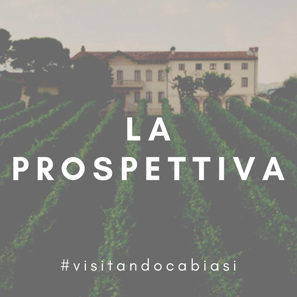 la-prospettiva-ca-biasi-cantina-vini